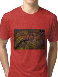 Autumn Palette Tri-blend T-Shirt