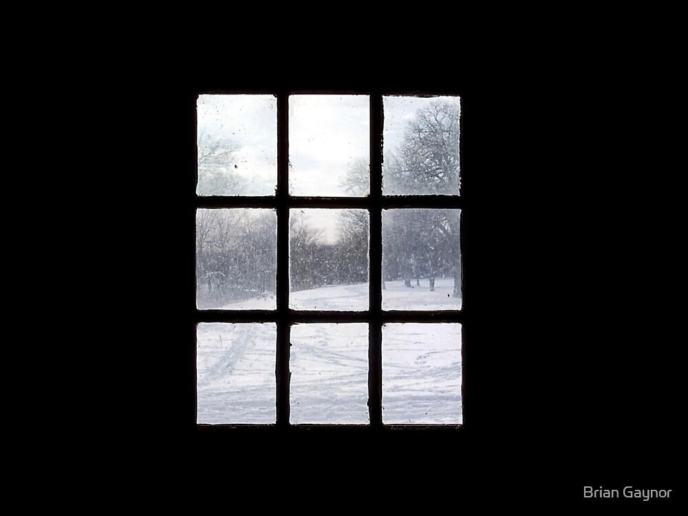 Framed by Light by Brian Gaynor
