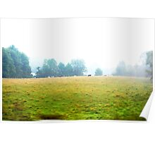 Rural Misty Morning Portrait Poster