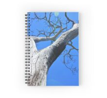 Tree of Light - Nature Background of Age Spiral Notebook