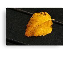 Seasonal Changes 2 Canvas Print
