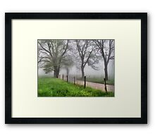 Early Spring - Great Smoky Mountains Framed Print