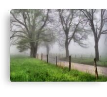 Early Spring - Great Smoky Mountains Canvas Print