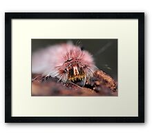 Whos Face Framed Print
