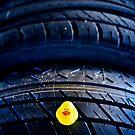 Tire pressure checker... by Susana Weber