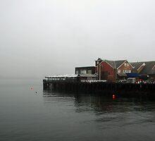Boston Harbor by BarkingGecko