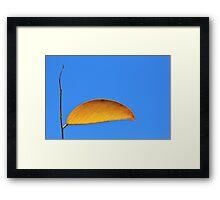 Golden Leaf - Simplistic Natural Beauty Framed Print