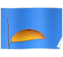 Golden Leaf - Simplistic Natural Beauty Poster