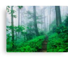 Foggy Appalachian Trail Canvas Print