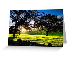 Good morning trees Greeting Card