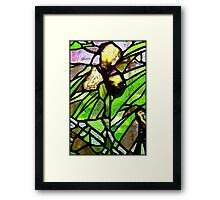 Iris in Quartz and Glass Framed Print
