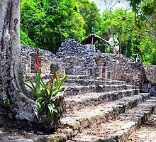 Mayan Ruins Coba, Mexico by BuffaloBob