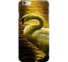 Swan at sunset iPhone Case/Skin