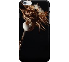 """""""No place like home"""" iPhone Case/Skin"""