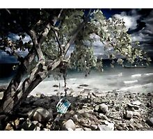 Lonely swing Photographic Print