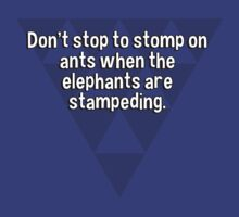Don't stop to stomp on ants when the elephants are stampeding. by margdbrown