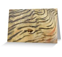 Wood Texture - Natural Background of Grain Greeting Card