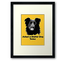 Adopt a Shelter Dog Today Framed Print