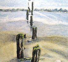 Groynes Sandsend by Sue Nichol