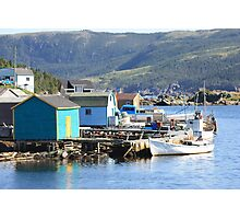 Stages Of Fleur De Lys  Harbor Photographic Print