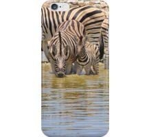 Zebra - Living a Colorful Life iPhone Case/Skin