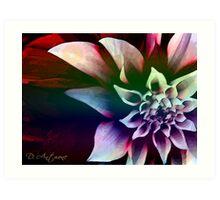 True Blossom Art Print
