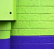 contrast of colors by Lynne Prestebak