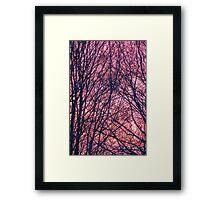Silhouette Trees Sunset Framed Print
