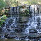 Twin Falls by Vivian Sturdivant