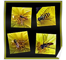 Four Bees on a Yellow Dahlia Collage Poster