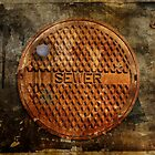The Sewer On Sunday  by Alex Preiss