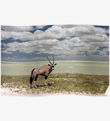 Oryx / Gemsbok,  and Etosha National Park ,Saltpan, Namibia, Africa. Poster