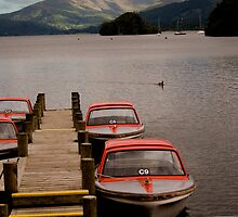 Boats on Lake Windermere  by DIANE  FIFIELD