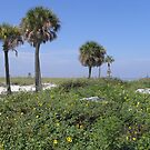 Howard Beach, Fl. by Junebug60