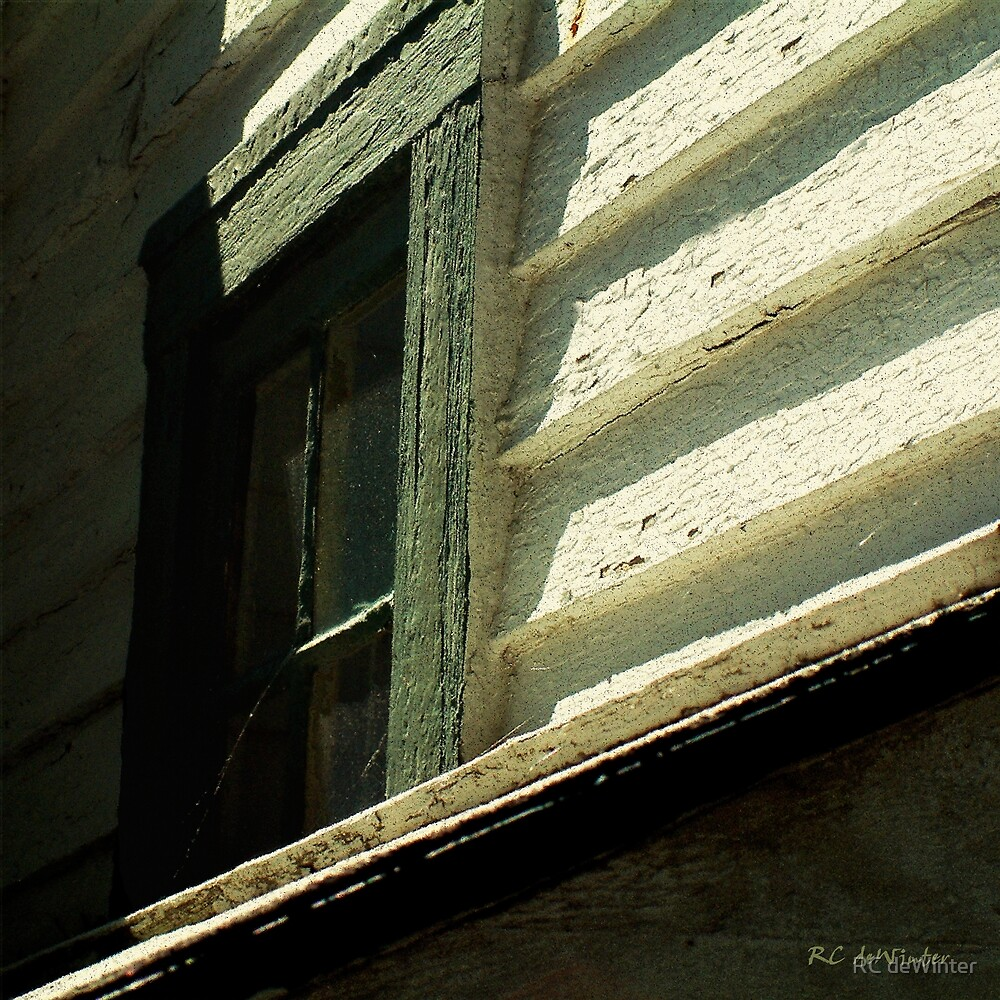Mrs. Cameron's Window by RC deWinter