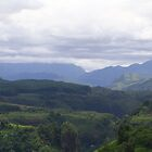 The Bukidnon Highlands, Philippines by MaluMoraza
