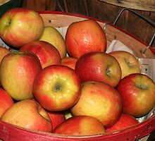 Apple Basket by Nadya Johnson
