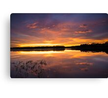 An Array of Colors Canvas Print