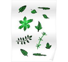 green plants  Poster