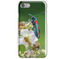 Burnet Moth on Bramble Flower iPhone Case/Skin