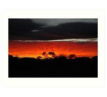 Outback Sunrise Art Print