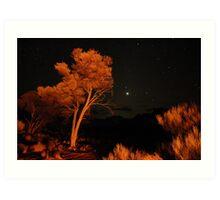 Venus by the light of the fire Art Print