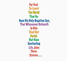John 3:16 ~ (C) Womens Fitted T-Shirt