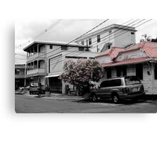 Streets of Dominica Canvas Print