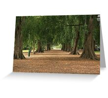 Strip Trees Greeting Card