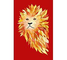 Fire Lion Photographic Print