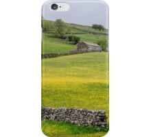 Yorkshire Dales in Summer iPhone Case/Skin