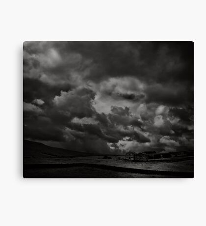 Beauty comes with a price Canvas Print