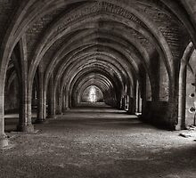Cellarium Fountains Abbey by spemj