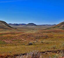 Big Sky, Big Land by Bryan D. Spellman